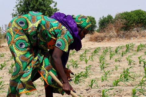 Nordøstlige Nigeria: En ny og bedre hverdag i Kiribiri