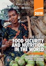 2019 - Statusrapport for matsikkerhet og ernæring i verden (SOFI): Beskyttelse mot økonomisk nedgang